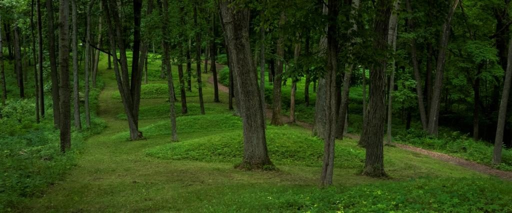 effigy_mounds